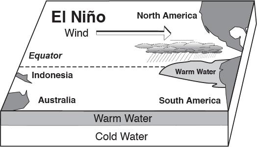El Nino Explained Surf Fur